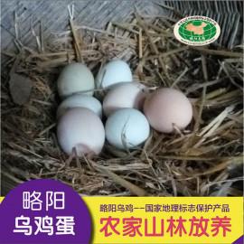 略阳 黑河人家乌鸡蛋  1.5kg 乌鸡蛋礼盒