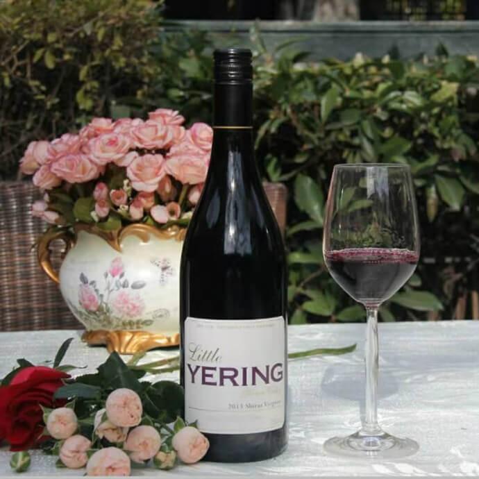 葡萄酒/红酒 小优伶西拉维欧尼干红葡萄酒